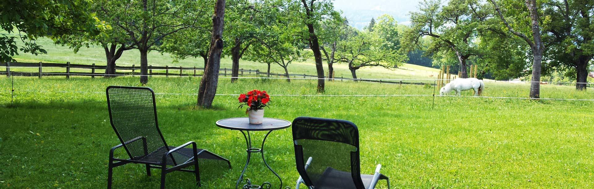 Bild Liegestühle am Oberpartenhauserhof