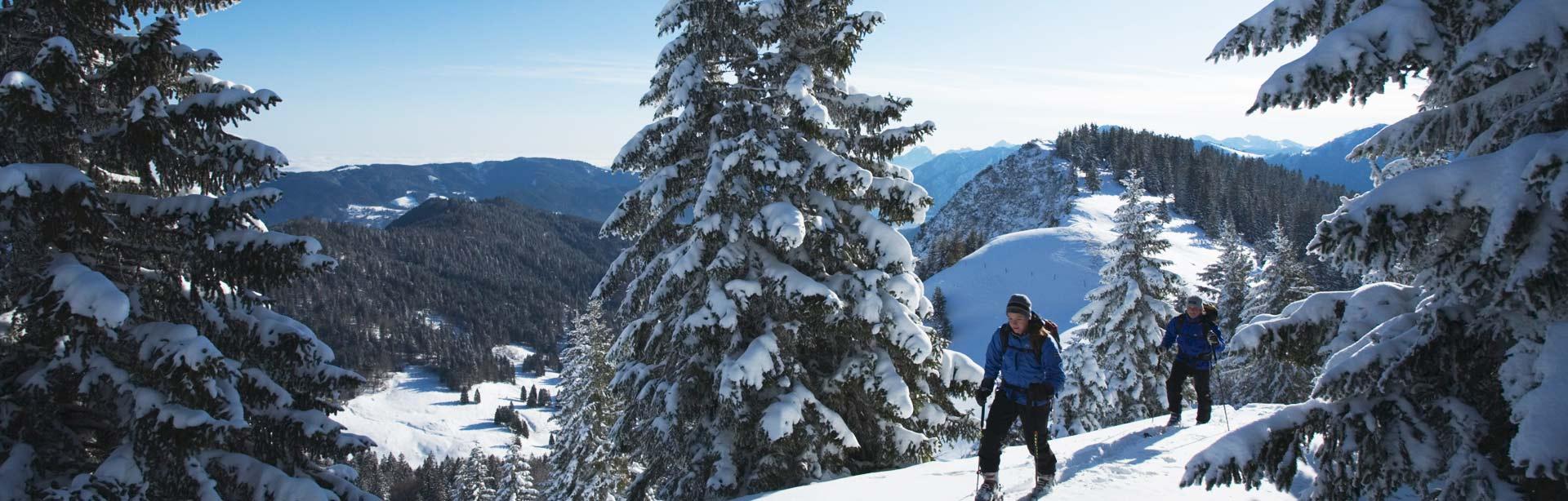 Bild Skitour Hirschberg